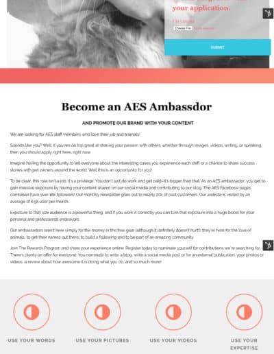 AES-Ambassador
