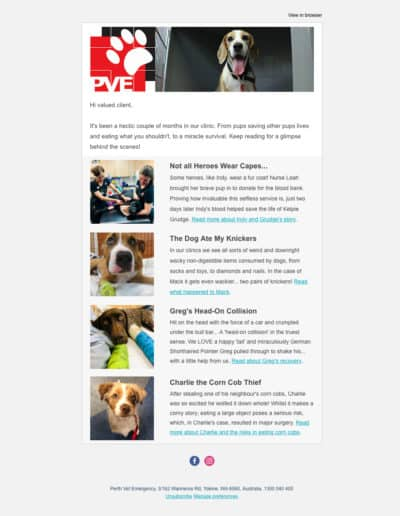 PVE-Monthly-Newsletter