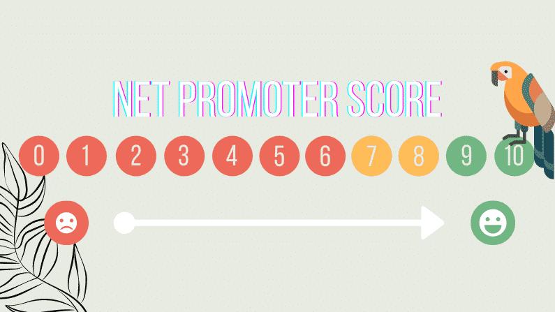 Net Promoter Score - Foure Drunk Parrots