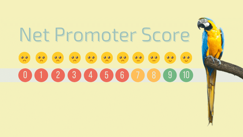 4DP NPS Score Result_Blog Post Featured Image