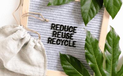 Employee Guidelines: Environmental Stewardship